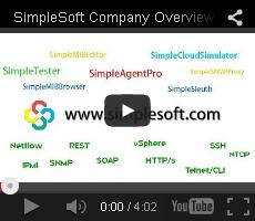 ss_company_video